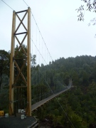Monster-Maramataha-Gorge-Bridge-1