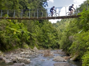 Pakihi Swingbridge - photo by Jamie Troughton