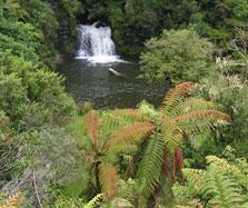 Rerekapa Falls