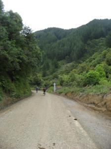 The Motu Road, onwards and upwards...