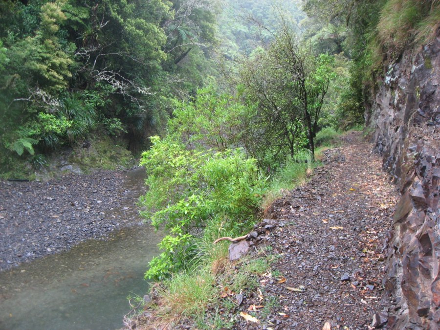 Teetering on the edge of the Pakihi Track