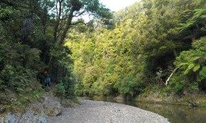River Crossing on the Te Waiti Track