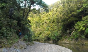 River Crossing on the Te Waiti Track